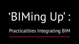 'BIMing Up' Practicalities Integrating BIM