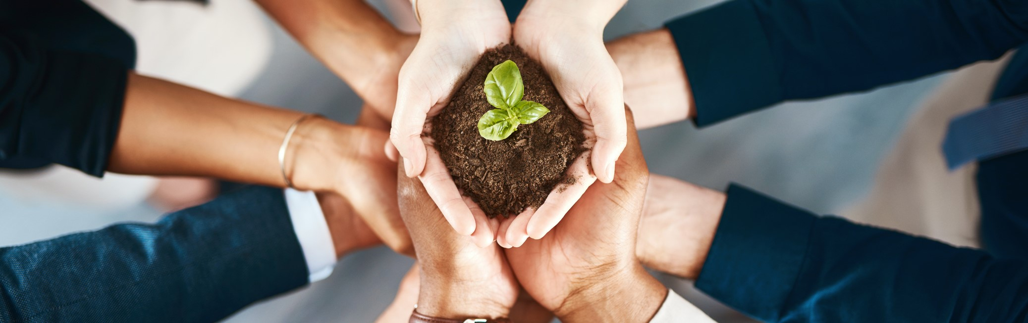 Meeting Expectations: Corporate Social Responsibility
