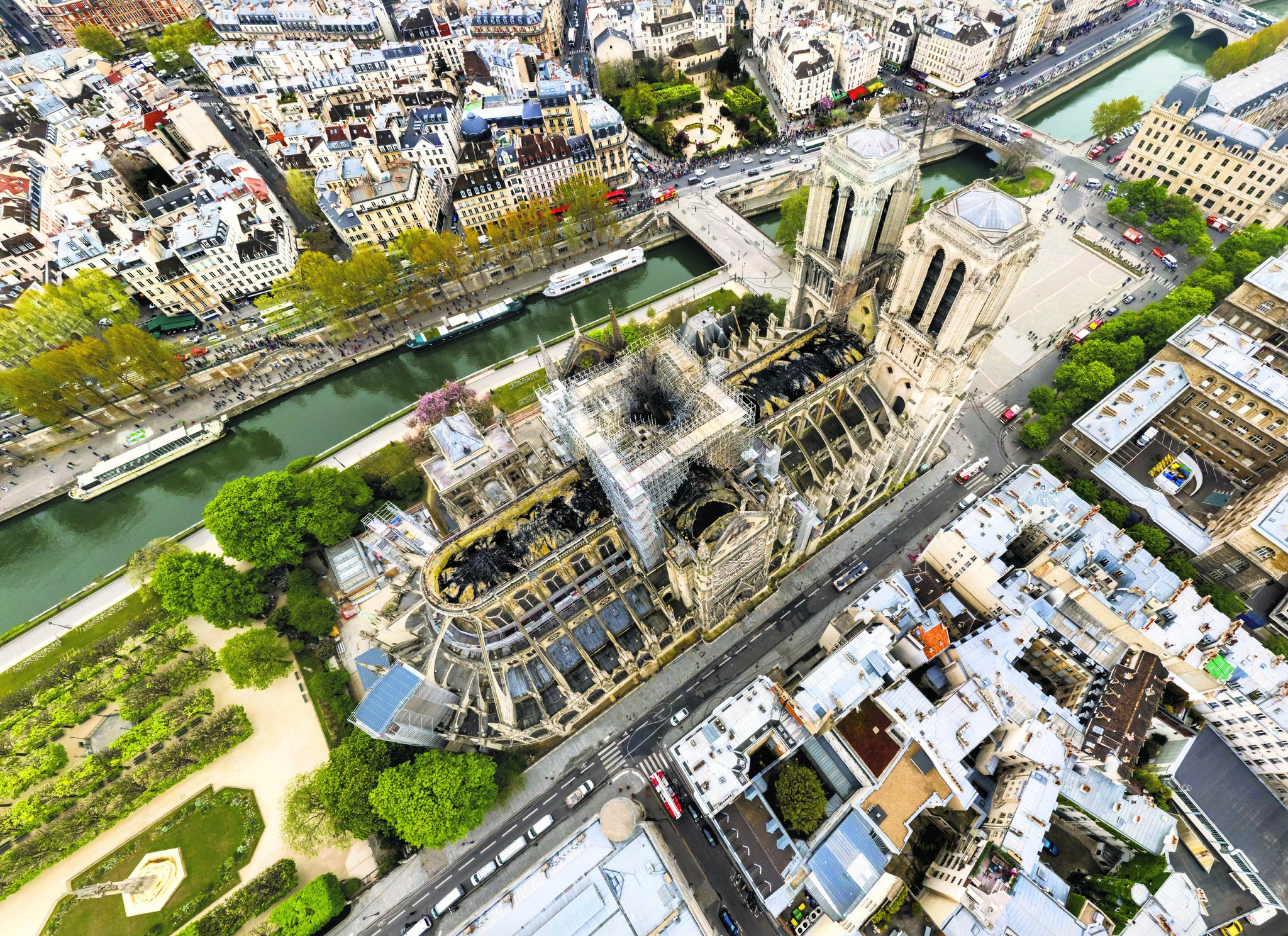 Adoddle Wants to Help Rebuild Notre Dame - the Heart of France